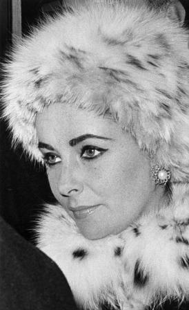 6th December 1962:  British-born US film actress Elizabeth Taylor (1932 -      ) in London, wearing a fur hat and collar.  (Photo by Victor Drees/Evening Standard/Getty Images)